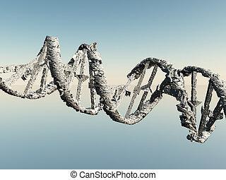 Damaged DNA Strands