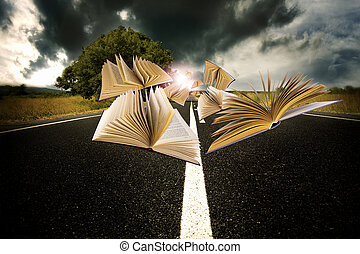 books flying over the landscape of the road