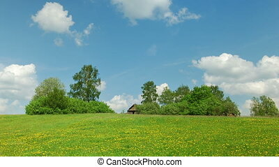 Rural landscape with old house,green field and white clouds...