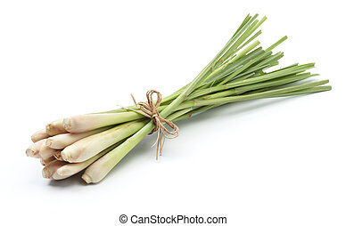 lemon grass - bundle of lemon grass isolated on white