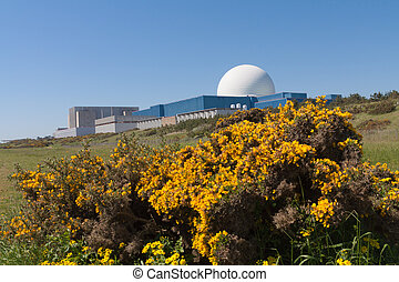 Sizewell B Nuclear Power Station, Suffolk, UK - The white...