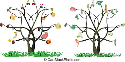award of horticulture fruit and veg - trees with fruits and...