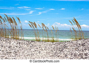 Emerald Coast - A beach off of the Emerald Coast of Florida....