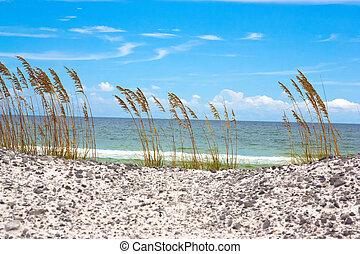 Emerald Coast - A beach off of the Emerald Coast of Florida....
