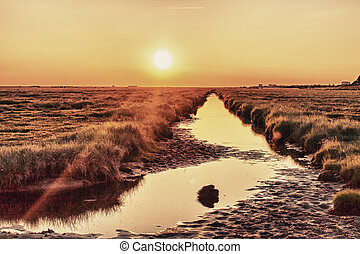 Wadden Sea - Germany St Peter Ording