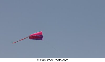 Beautiful kite against the blue sky