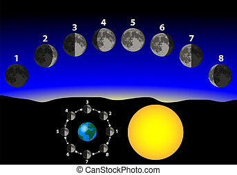 phases of the moon relative to earth