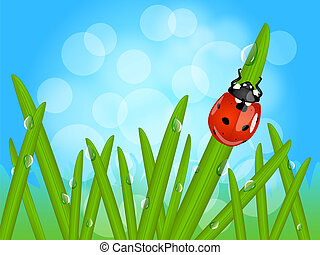 Ladybug on wet grass - Beautiful macro landscape with cute...