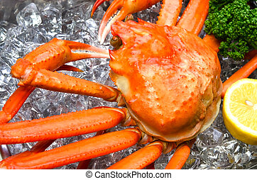 red snow crab - Cooking ingredient series    red snow crab.
