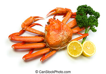 red snow crab - Cooking ingredient series red snow crab
