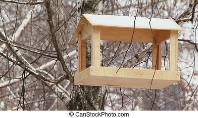 Feeder for birds in winter. Two frames.