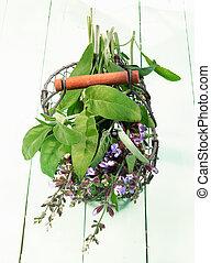 Fresh Flowering sage