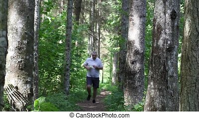 Runner on the forest trail