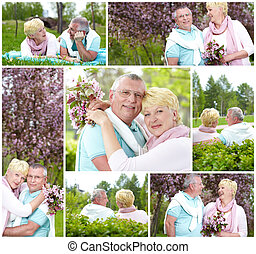 Leisure in park - Collage of happy mature couple spending...