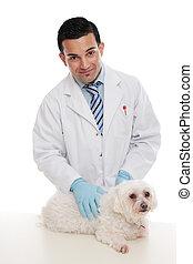 Friendly vet holding pet animal