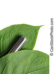 Battery And Leaves - Recycling concept. Ordinary battery...