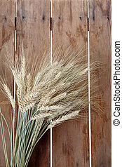 Bundle of wheat ears
