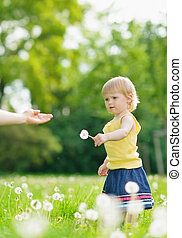 Baby girl outdoors giving dandelions to mother