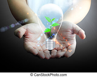 Light bulb in hand