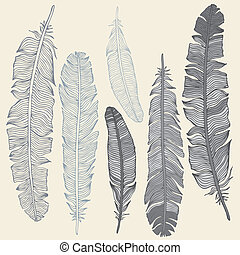 Feather Set - Vintage Feather vector set. Hand drawn...
