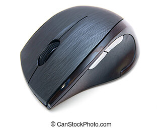 The computer mouse. On a white background.