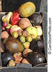Dying and decaying fruits in a box as garbage - Decaying and...