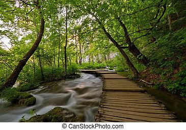 Walkway over streaming water. - Wooden walkway over...
