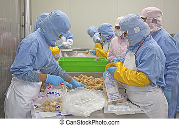workers in food processing production line in a factory in...