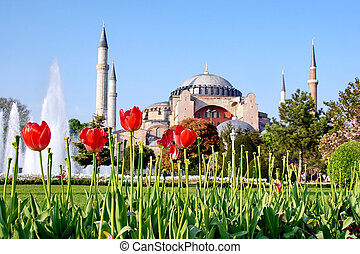 Hagia Sophia, Istanbul, Turkey - Garden of Hagia Sophia in...