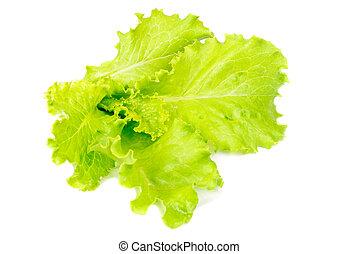 fresh salad isolated on white