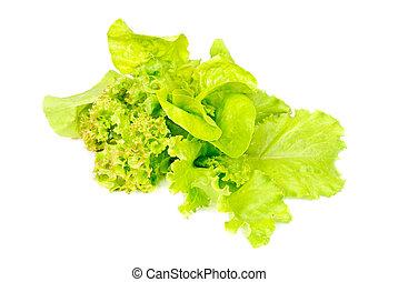 Mix fresh salad isolated on white background