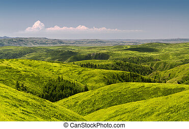 Spring hills - Green spring hills with scattered trees....