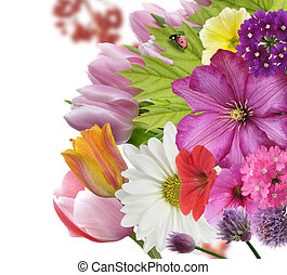 Flower Background - Spring Flowers And Leaves ,Close Up For...
