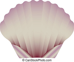 A Sea Scallop Isolated on White