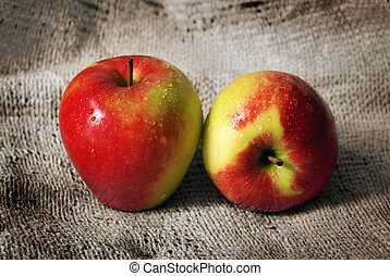 Two Jonagold Apples placed on a rough fabric.