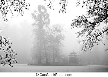 Trees and Arbour in the Mist - Tall trees and a small...