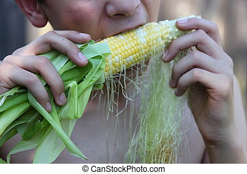 Kid Eating Corn - Child eating corn cob right off the plant....