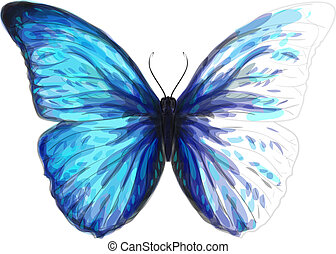 Butterfly  Morpho Anaxibia. Unfinished Watercolor drawing imitation. Vector illustration.