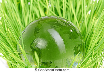 Environment concept, glass globe in the grass