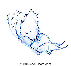 water butterfly isolated on a white background