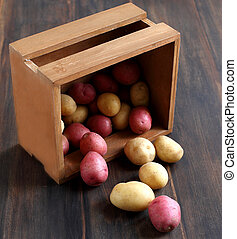 Raw potatoes in a wooden box - Raw different potatoes in a...