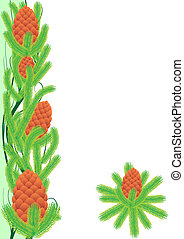 Pine cones - Cedar branches with cones. The illustration on...
