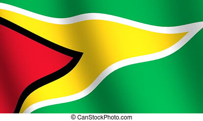Waving flag Guyana