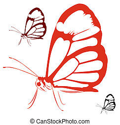 A huge black and white butterfly