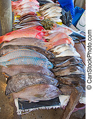 Maputo fish market - Fresh fish on the Maputo fish market