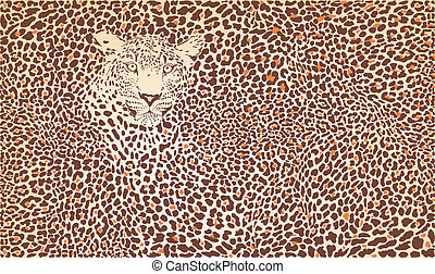 Pattern background leopard - Vector illustration pattern...