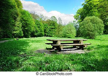 野餐, 地方, 森林, 打開