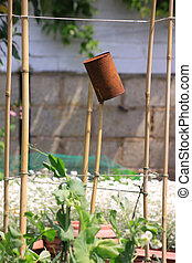 Bird Scarer - A rusty can set on top of some bamboo poles,...