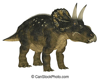 Nedoceratops - Illustration of a Nedoceratops dinosaur...