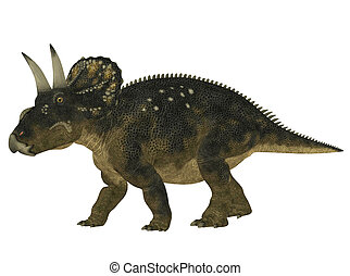 Nedoceratops - Illustration of a Nedoceratops (dinosaur...